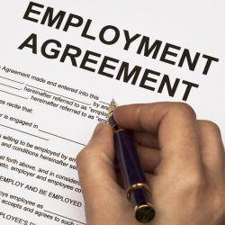 Diploma in Labour Law (MSU)